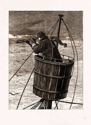 Arctic Drawing - The Arctic Expedition, The Crows Nest by Litz Collection