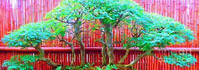 The Art Of Bonsai Art Print by Ann Johndro-Collins