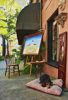 Wow Photograph - The Artist's Dog by Marcia Colelli