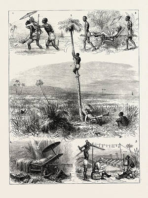Ghana Drawing - The Ashantee War How I Took Coomassie 1. I Land In Great by African School