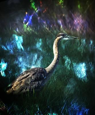 Nirvana - The Aura of a Great Blue Heron by Belinda Greb