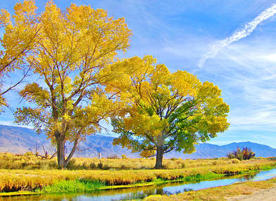 Owens River Photograph - The Aura Of Autumn by Marilyn Diaz