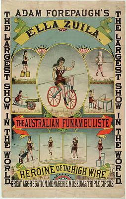 The Australian Funambulist. Art Print
