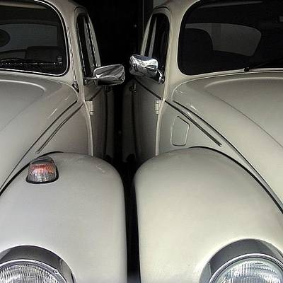 Decorative Photograph - The Authentic Love Bugs by Carlos Alkmin