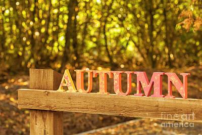 The Autumn Art Print by Amanda Elwell