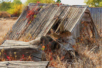 Photograph - The Autumn Of Nebraska - Artistic by Bill Kesler