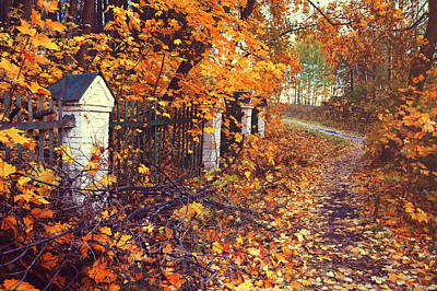 The Autumn Path Aside Old Fence Art Print