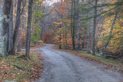Photograph - The Autumn Walk by Zev Steinhardt