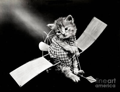 Photograph - The Aviator In 1914 by Science Source