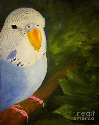 Painting - The Baby Parakeet - Budgie by Abbie Shores