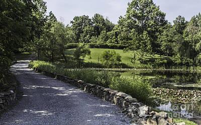 Upperville Photograph - The Back Road by Arlene Carmel
