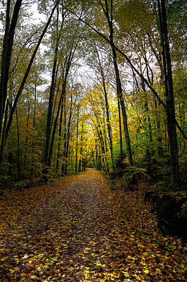 Of Autumn Photograph - The Back Roads Of Autumn by David Patterson