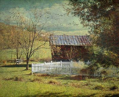 The Backyard Art Print by Fran J Scott
