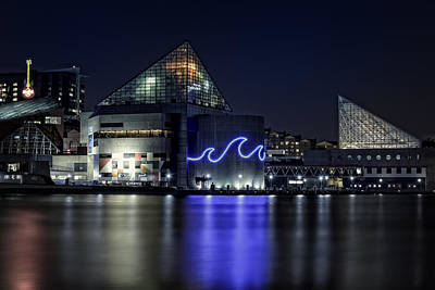 Baltimore Inner Harbor Photograph - The Baltimore Aquarium by Rick Berk