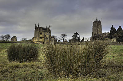 Sheep - The  Banqueting Hall and St James Behind the Grasses by Wendy Chapman