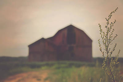 Red Farmhouse Photograph - The Barn Daylight Version by Carrie Ann Grippo-Pike