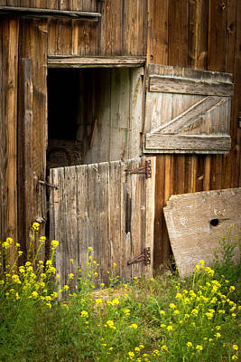 The Barn Door Art Print