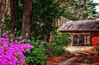 The Barn In Spring Art Print