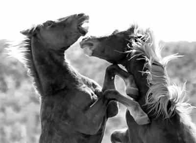 Photograph - The Battle by Athena Mckinzie