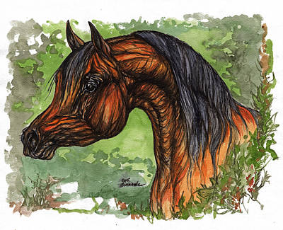 The Bay Arabian Horse 1 Original