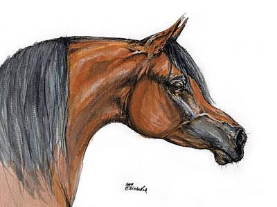The Bay Arabian Horse 18 Art Print by Angel  Tarantella