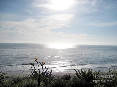 Photograph - At The Beach At Dana Point California by Conni Schaftenaar