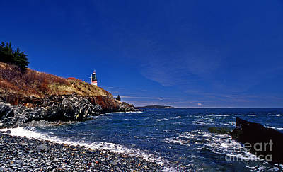The Beach At West Quoddy Art Print by Skip Willits