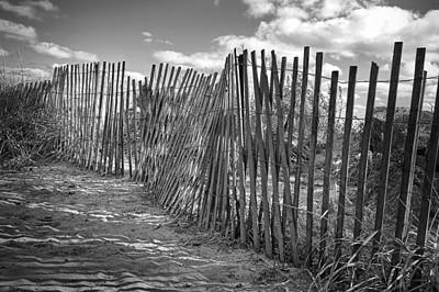 Lake Photograph - The Beach Fence by Scott Norris