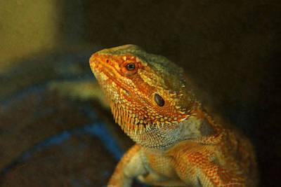 Dragon Photograph - The Bearded Dragon by Ernie Echols