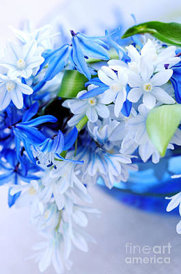 The Beautiful  Blue Flower Art Print by Boon Mee