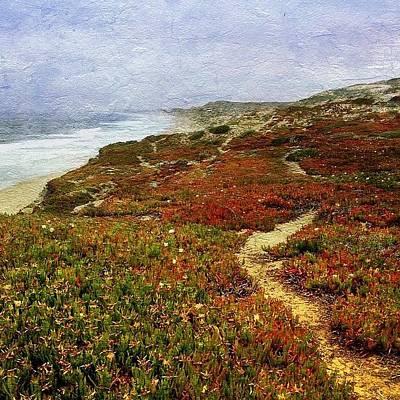 Ribera Beach Trail In Carmel Art Print