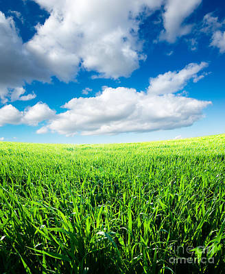 The Beautiful Greens Landscape Print by Boon Mee