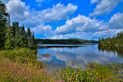 The Beautiful Lake Abanakee New York Art Print by David Patterson
