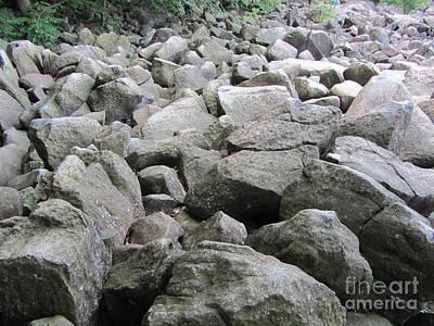 The Beautiful Tones Of The Ringing Rocks Art Print by Susan Carella