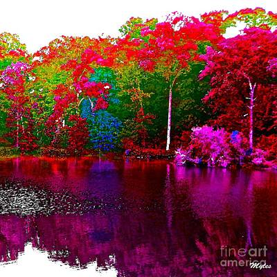 Photograph - The Beautiful Trees By The Lake by Saundra Myles