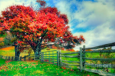 Paintography Photograph - The Beauty Of Fall II - Blue Ridge Parkway by Dan Carmichael