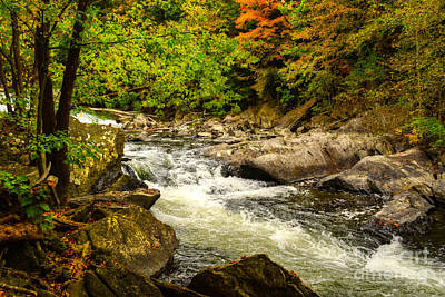Photograph - The Beauty Of Fall by Kathy Baccari