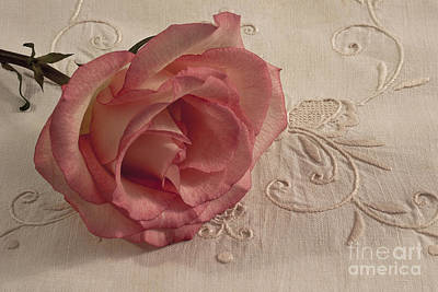 Art Print featuring the photograph The Beauty Of Just One Rose by Sandra Foster