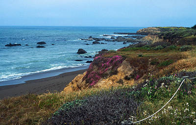 The Beauty Of The Central Coast Art Print by Kathy Yates