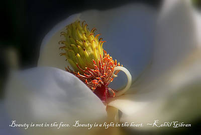 Photograph - The Beauty Within 2 by HH Photography of Florida