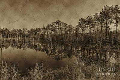 Photograph - The Beaver Pond by Ken Frischkorn