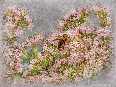 Photograph - The Bee by Hanny Heim