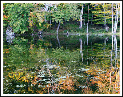Photograph - The Beginning Of Autumn by Mariarosa Rockefeller