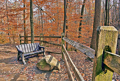 Bench Photograph - The Bench by Marcia Colelli