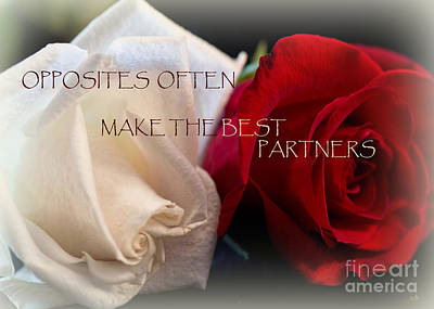 Photograph - The Best Partners by Sandra Clark