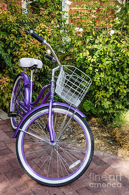 Photograph - The Bicycle by Sue Smith