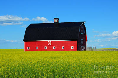 Photograph - The Big Red Barn by Bob Christopher