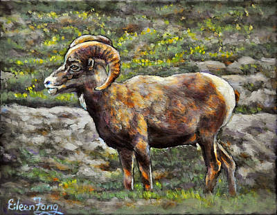 Year Of The Sheep Painting - The Bighorn Sheep by Eileen  Fong