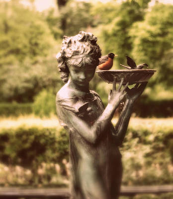 Photograph - The Bird Bath by Jessica Jenney