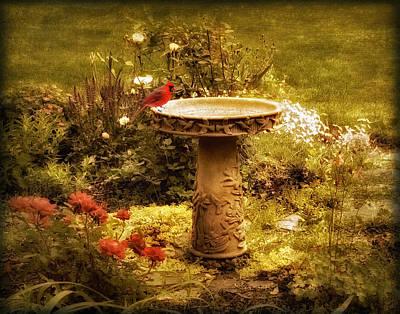 Flower Gardens Photograph - The Birdbath by Jessica Jenney